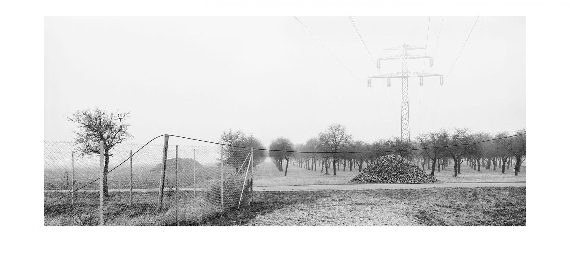 Der Traum vom Reich #06, Kleinkorbetha 1992/2008