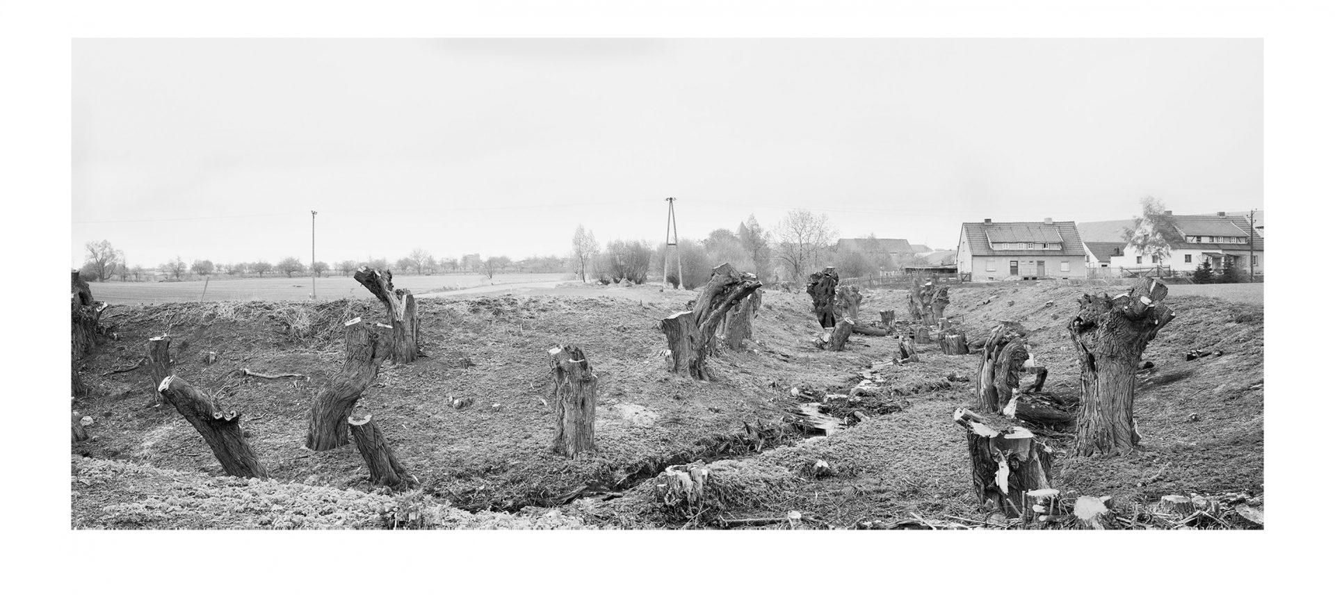Der Traum vom Reich #16, Osterkörner 1991/2008